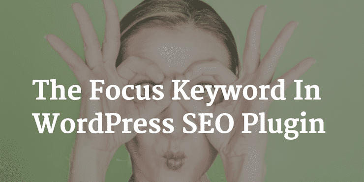The Focus Keywords In WP SEO Plugin by Yoast