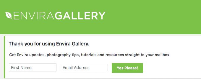 envira gallery newsletter